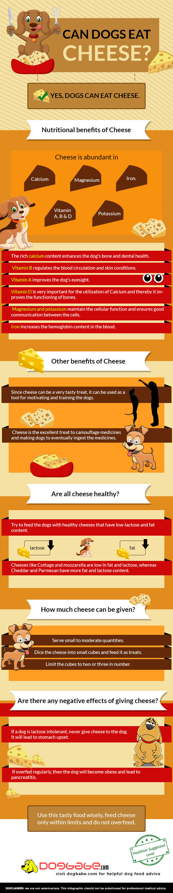 can dogs eat cheese - infographics