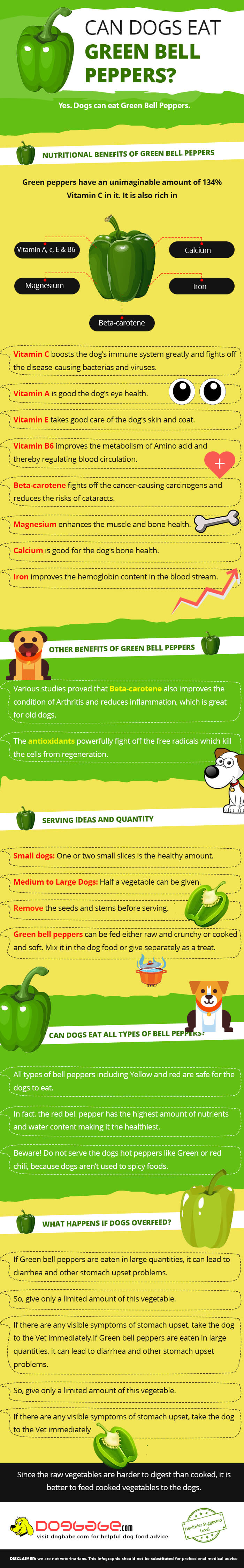 can dogs eat green bell peppers - infographics