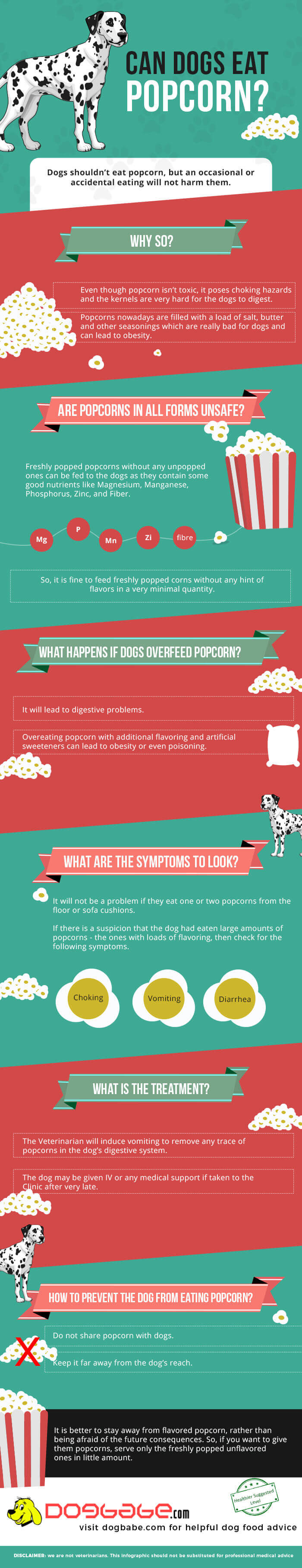 Can dogs eat popcorn infographic