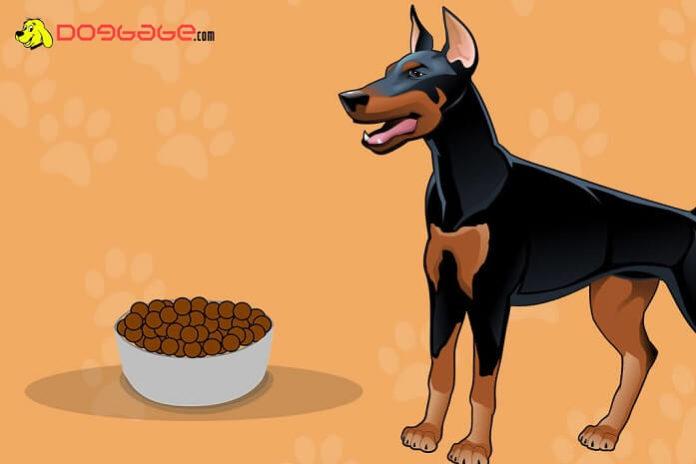 dogs eat cheerios